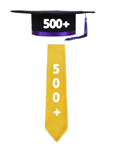 Pachet PLUS 500+ toca si...